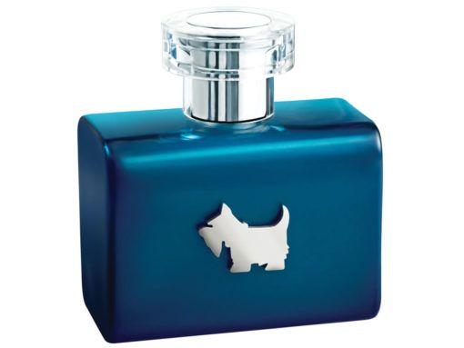 ferrioni-fragancia-azul-terrier-para-caballero-100-ml